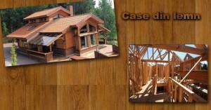 case-lemn