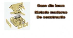 case-lemn2jpg